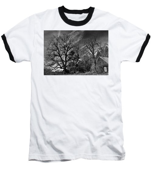 The Old Oak Tree Baseball T-Shirt by Steve Warnstaff