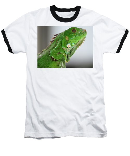 The Omnivorous Lizard Baseball T-Shirt
