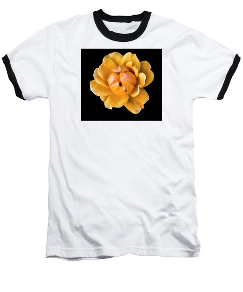 The Perfect Rose Baseball T-Shirt by Venetia Featherstone-Witty