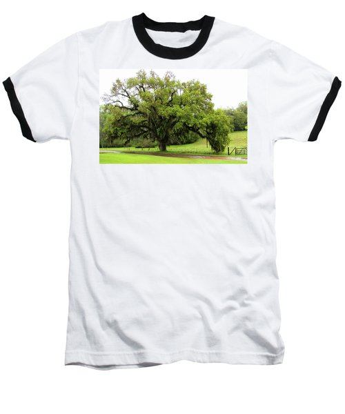 The Perfect Tree					 Baseball T-Shirt