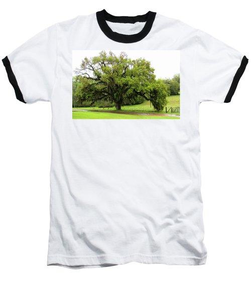 The Perfect Tree Baseball T-Shirt