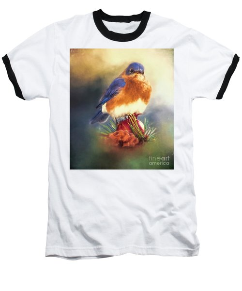 The Pondering Bluebird Baseball T-Shirt