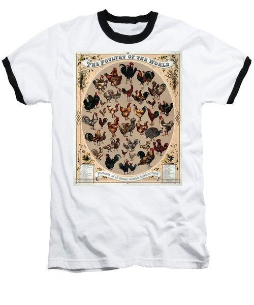 The Poultry Of The World 1868 Baseball T-Shirt