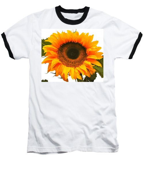The Prettiest Sunflower Baseball T-Shirt