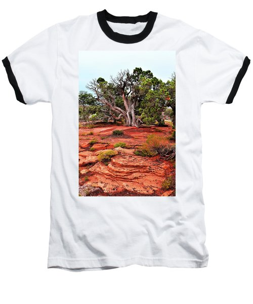 The Tree That Knows All Baseball T-Shirt