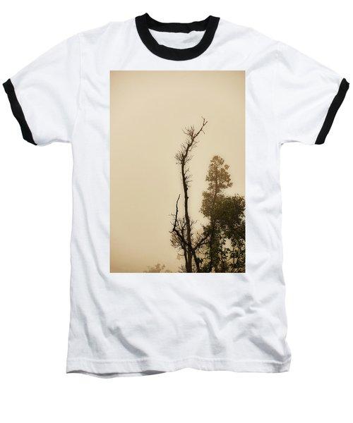 The Trees Against The Mist Baseball T-Shirt by Rajiv Chopra