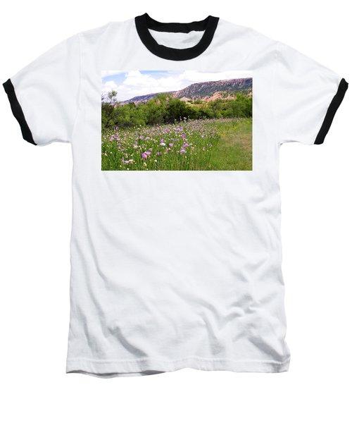 Thistles In The Canyon Baseball T-Shirt