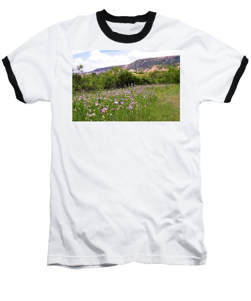 Thistles In The Canyon Baseball T-Shirt