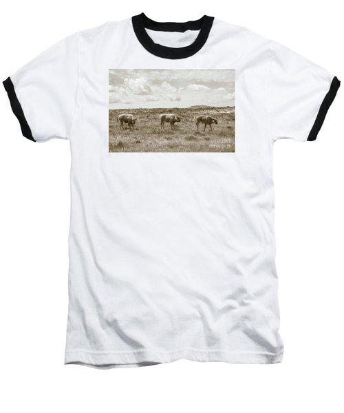 Baseball T-Shirt featuring the photograph Three Buffalo Calves by Rebecca Margraf