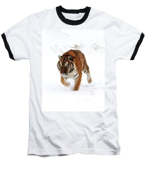 Tiger In Snow Baseball T-Shirt