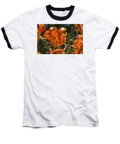 Tiger Lilies In The Sun Baseball T-Shirt