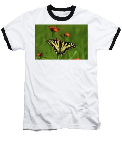 Tiger Swallowtail Butterfly Baseball T-Shirt by Nancy Landry