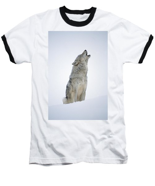 Timber Wolf Portrait Howling In Snow Baseball T-Shirt