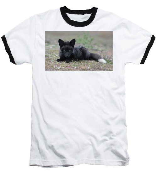 Baseball T-Shirt featuring the photograph Here's Looking At You by Elvira Butler