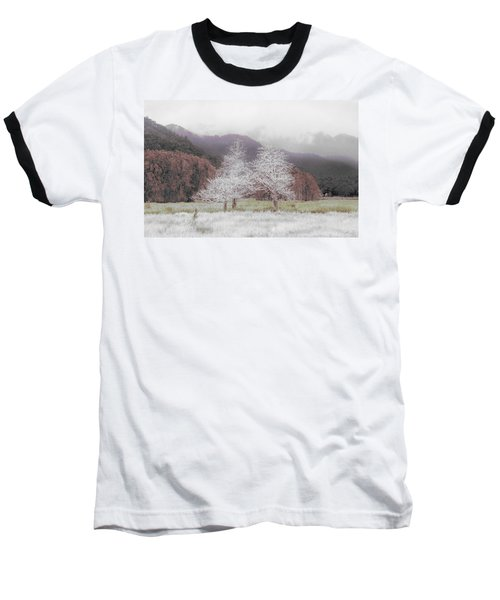 Together We Stand Baseball T-Shirt