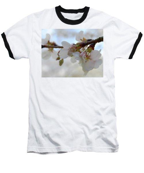 Dogwood Branch Pink Baseball T-Shirt