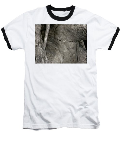Baseball T-Shirt featuring the photograph Tree Memories # 26 by Ed Hall