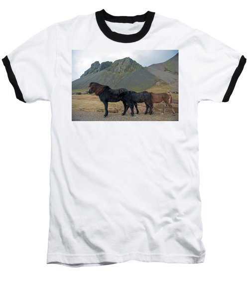 Baseball T-Shirt featuring the photograph Tri - Color Icelandic Horses by Dubi Roman