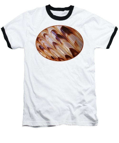 Triton Seashell Abstract Baseball T-Shirt by Gill Billington