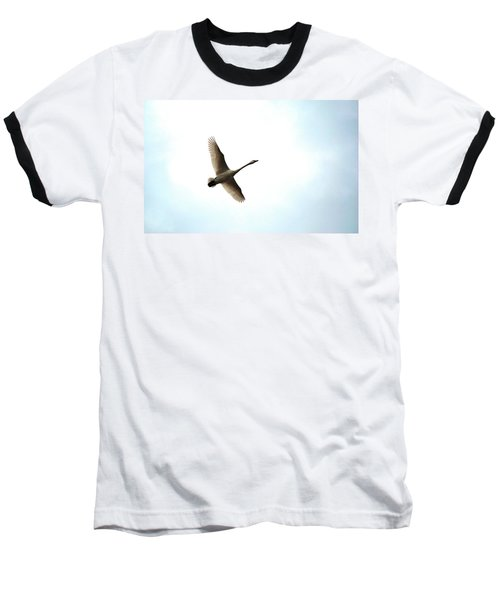 Trumpeter Swan In Flight Baseball T-Shirt