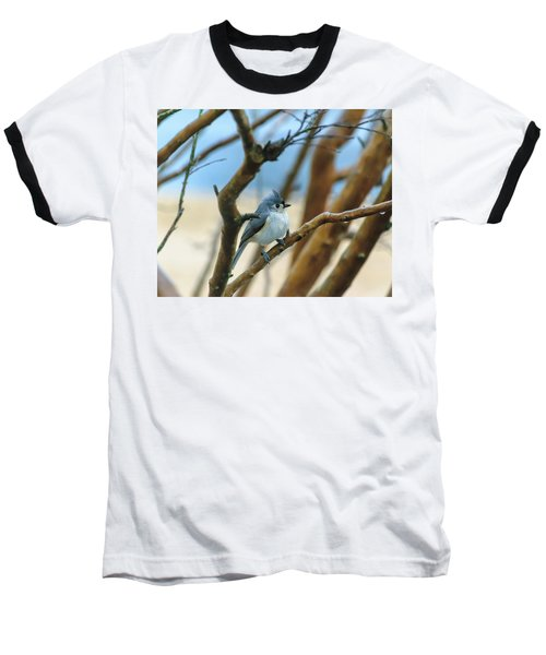 Tufted Titmouse In Tree Baseball T-Shirt