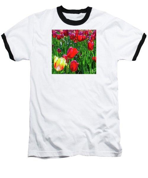 Tulip Garden In Bloom Baseball T-Shirt