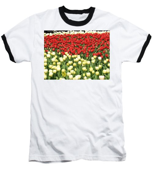 Tulips Of Spring Baseball T-Shirt by Christopher Woods
