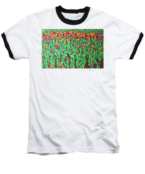 Tulips Tulips Everywhere Baseball T-Shirt