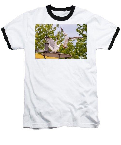 Two Seabird Fighting Baseball T-Shirt