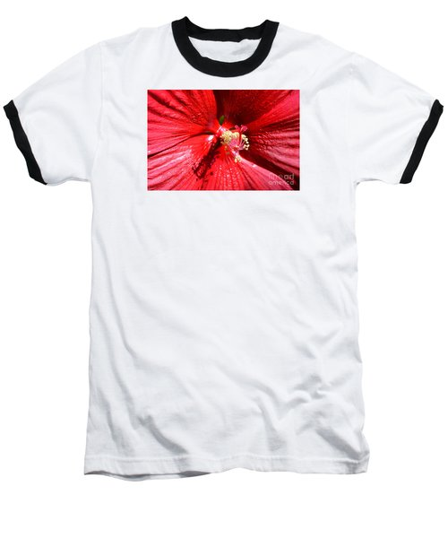 Up Close And Personal Baseball T-Shirt by Lew Davis