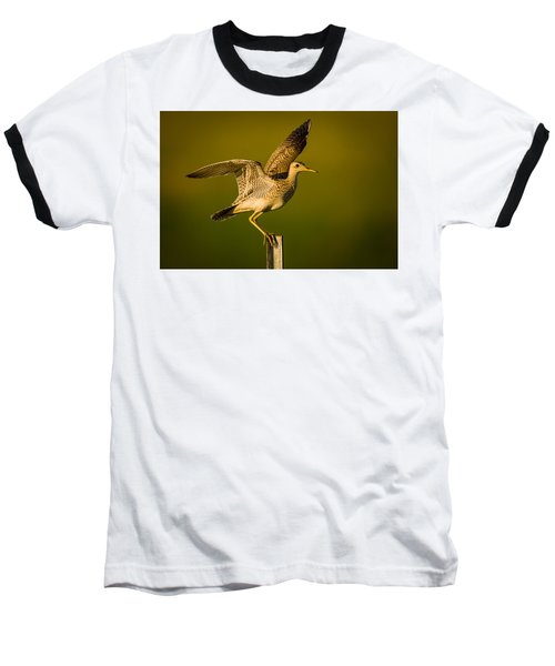 Upland Sandpiper On Steel Post Baseball T-Shirt