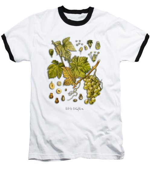 Vitis Vinifera Baseball T-Shirt