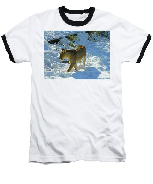 Walking On The Wild Side Baseball T-Shirt by Emmy Marie Vickers