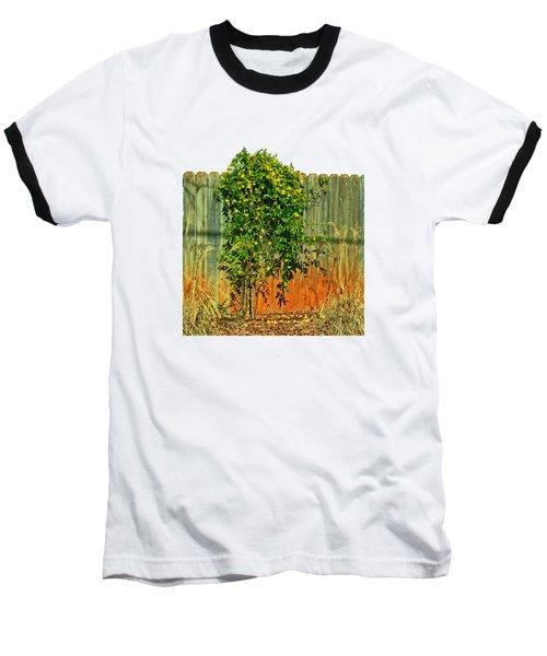 Wall Of Jasmine Baseball T-Shirt