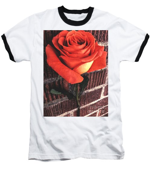 Wallflower Baseball T-Shirt