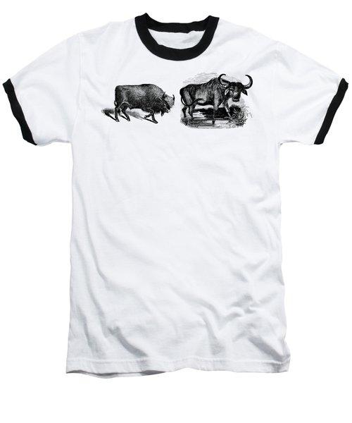 Water Buffalo Bison Animal Illustration Drawing Baseball T-Shirt