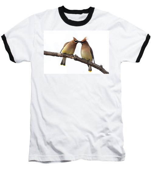 Waxwings In Love Baseball T-Shirt