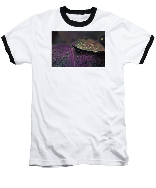 Wet Purple Leaves Baseball T-Shirt by Bonnie Bruno