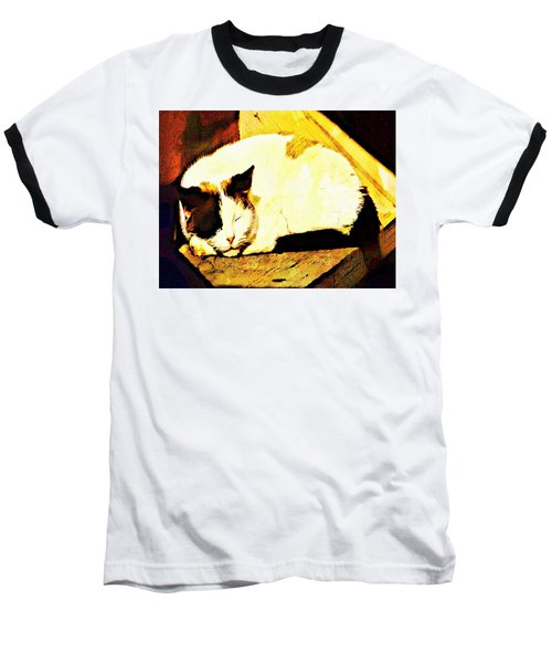 What Do Cats Dream Of Baseball T-Shirt