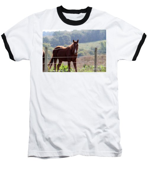 What? Baseball T-Shirt