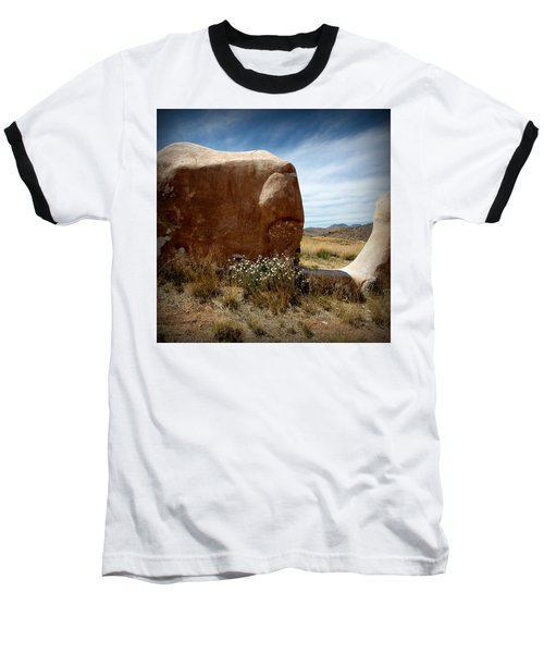 Baseball T-Shirt featuring the photograph Where Have All The Flowers Gone by Joe Kozlowski