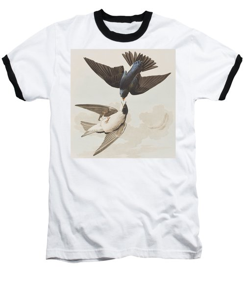 White-bellied Swallow Baseball T-Shirt