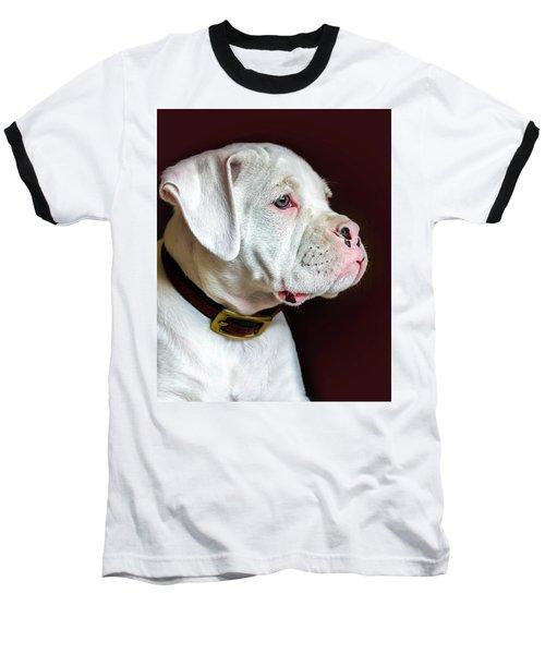 White Boxer Portrait Baseball T-Shirt by Dawn Romine