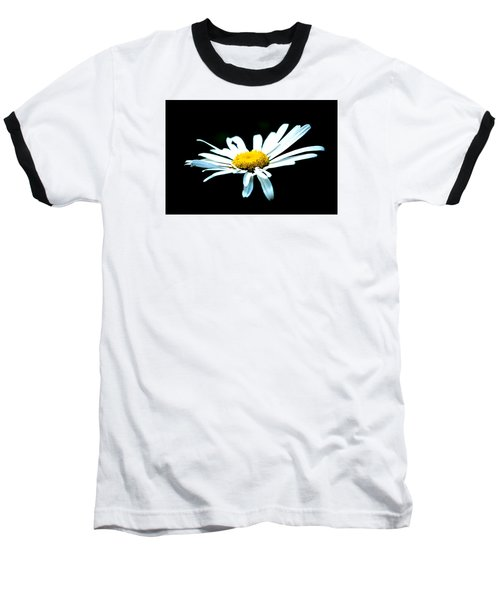 Baseball T-Shirt featuring the photograph White Daisy Flower Black Background by Alexander Senin