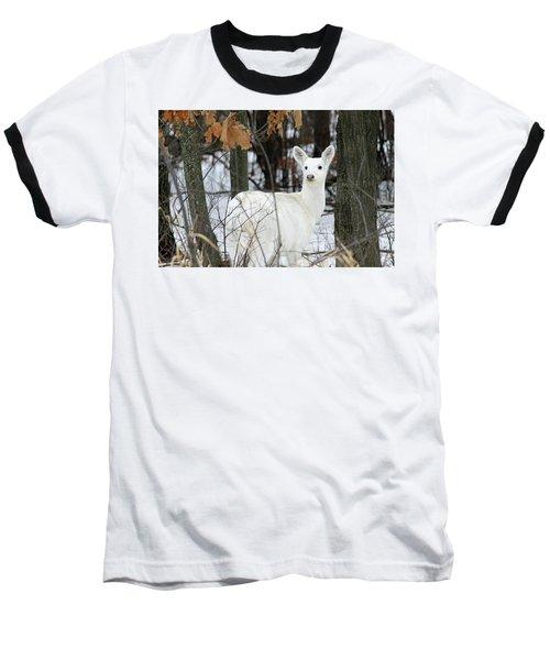 White Deer Vistor Baseball T-Shirt by Brook Burling