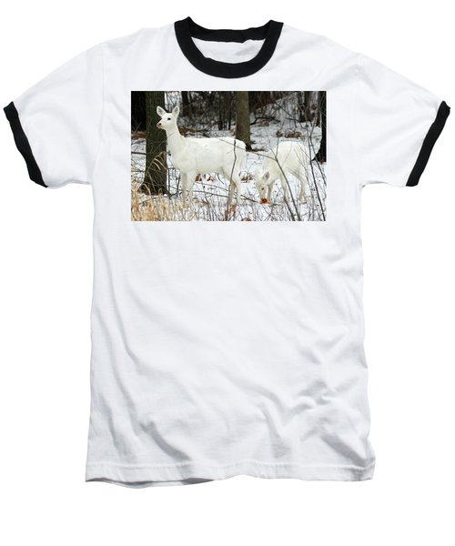 White Deer With Squash 4 Baseball T-Shirt by Brook Burling