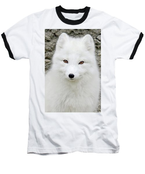 White Fox Baseball T-Shirt by Athena Mckinzie