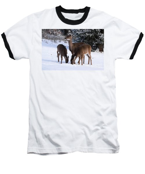 White-tailed Deer - 8855 Baseball T-Shirt