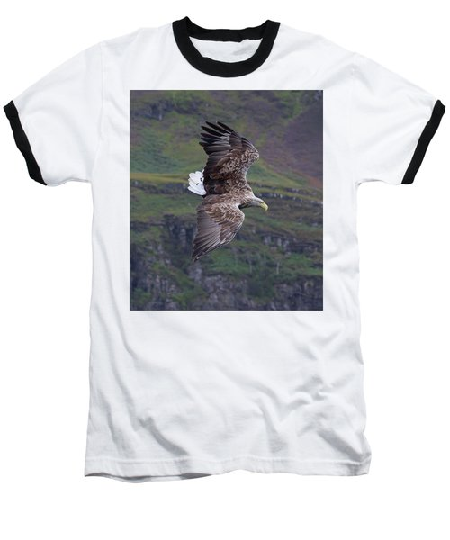 White-tailed Eagle Banks Baseball T-Shirt