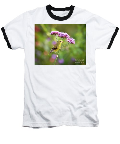 Baseball T-Shirt featuring the photograph Wild Birds - Female Goldfinch by Kerri Farley